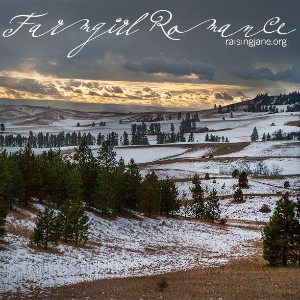 farm_romance-2752