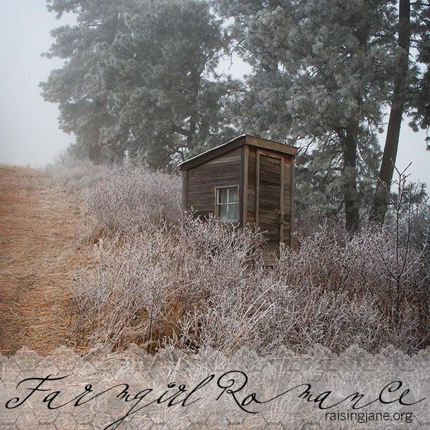 farm_romance-3254