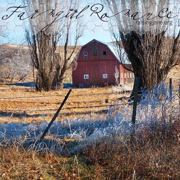 farm_romance-3595