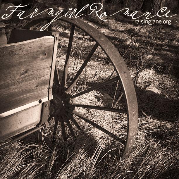 farm_romance-3605
