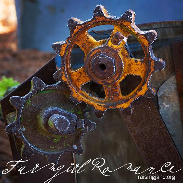 farm_romance-3614