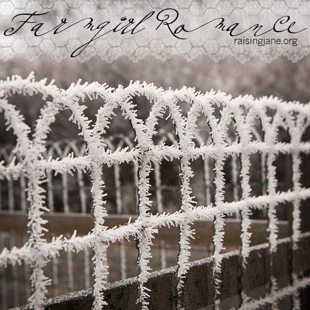 farm_romance-4140