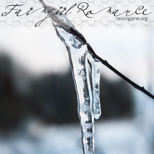 farm_romance-5074