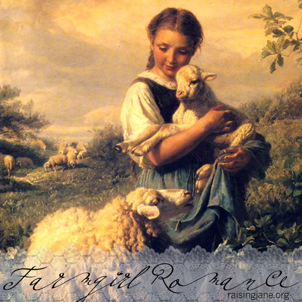 farm_romance-sheep