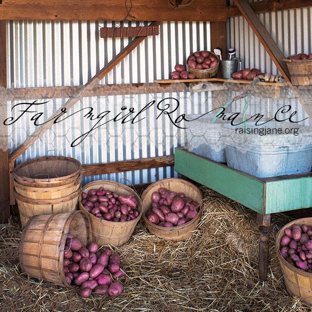 farm_romance-0327
