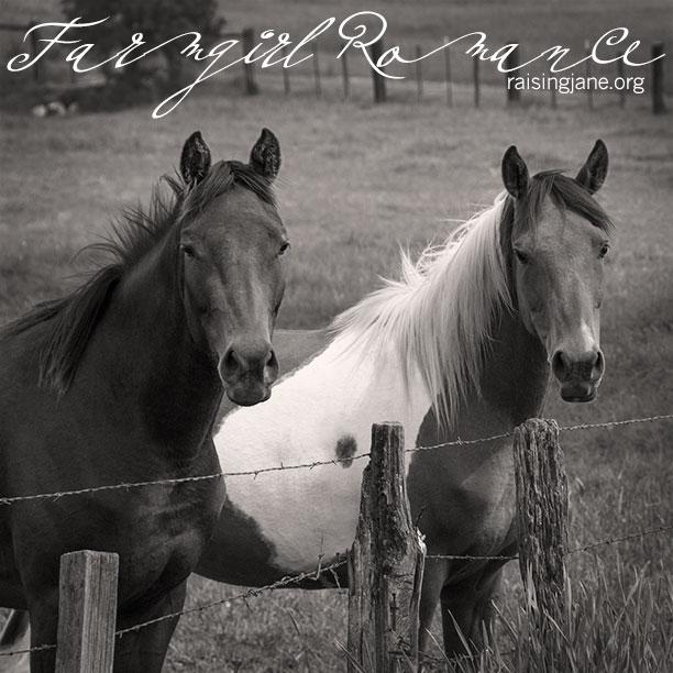 farm_romance-0742
