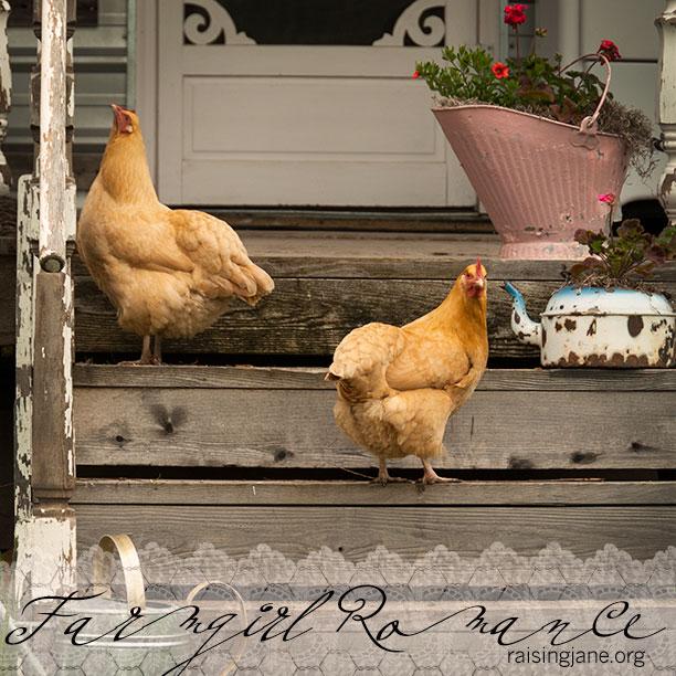farm_romance-0791