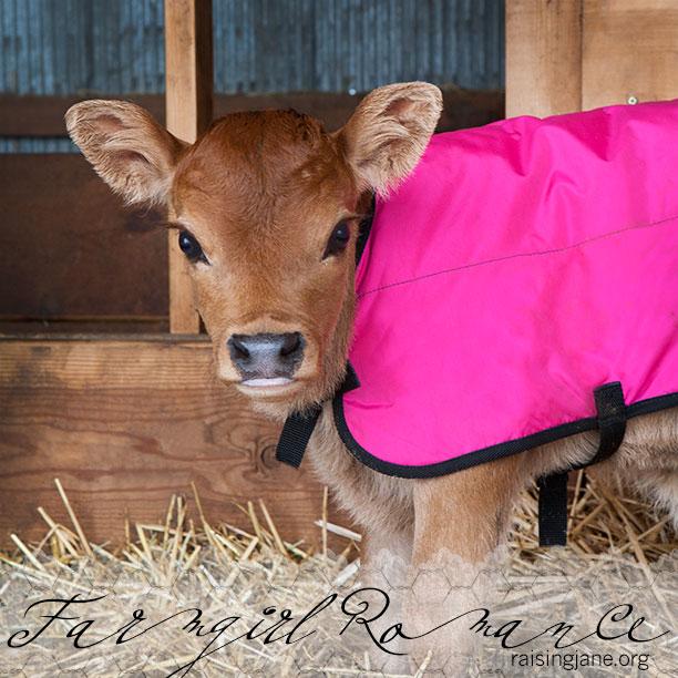 farm_romance-6654