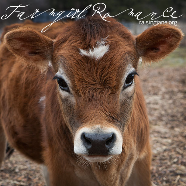 farm_romance-6853
