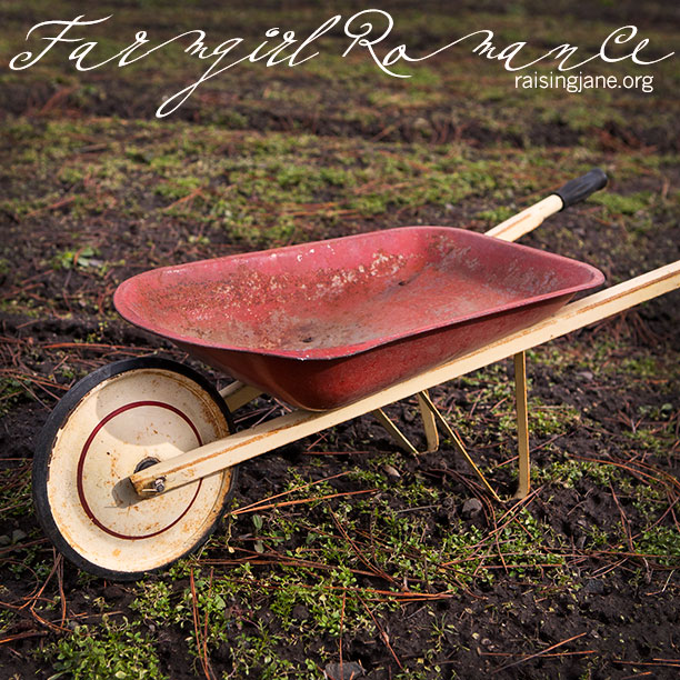 farm_romance-6994