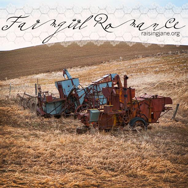 farm_romance-7084