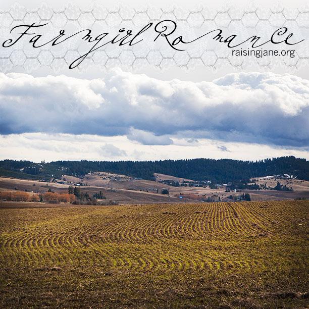 farm_romance-7239
