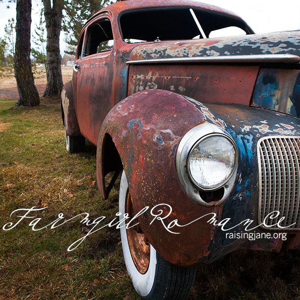farm_romance-7252