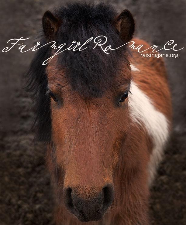 farm_romance-7308