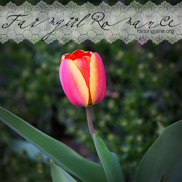 farm_romance-0873