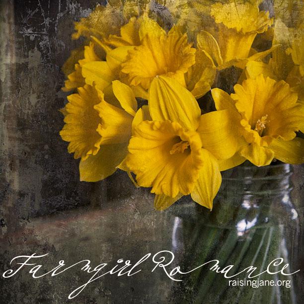 farm_romance-9401