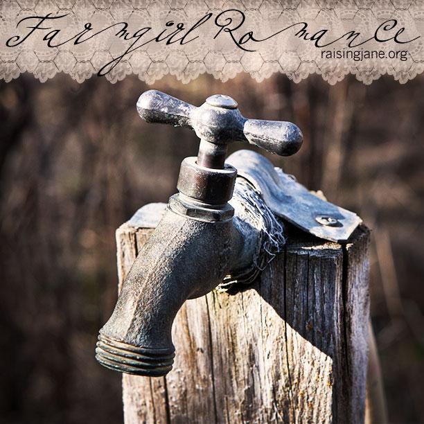 farm_romance-9807