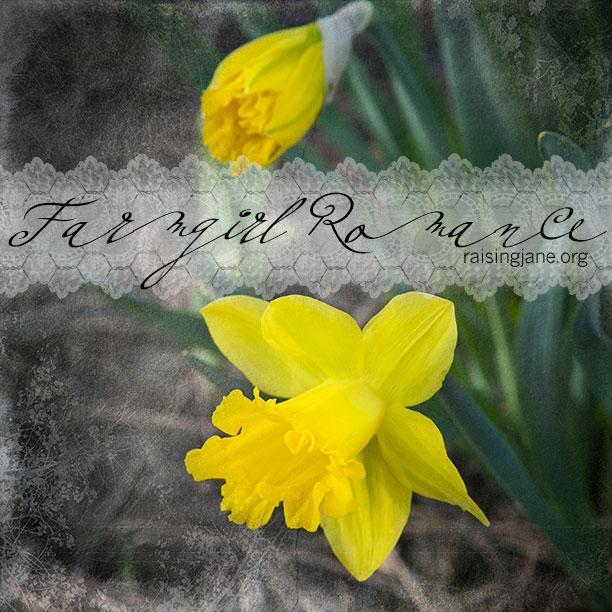 farm_romance-9821