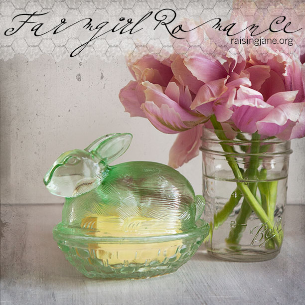 farm_romance-9983