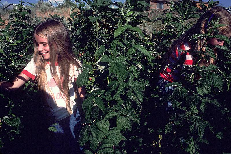 800px-Girls_gardening