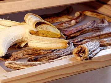 dried-bananas030805-022-MJ3-jpg