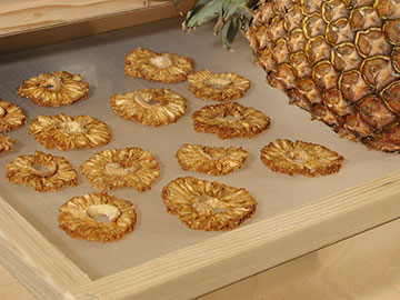dried-pineapple030805-048-MJ3