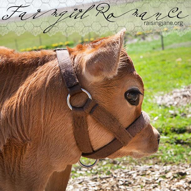 farm_romance-1259