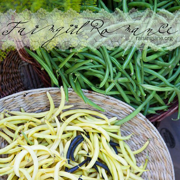farm_romance-beans