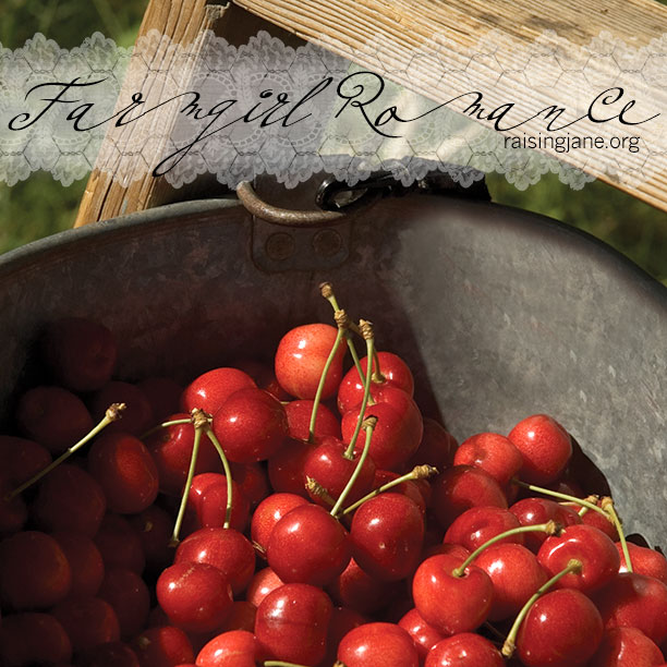 farm_romance-cherries