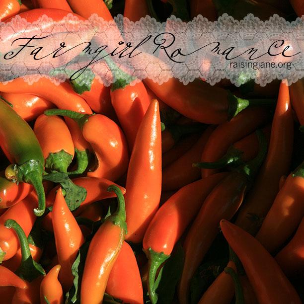 farm_romance-peppers