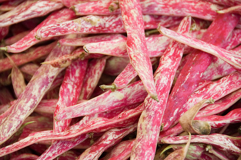 800px-Cranberry_beans_at_the_Oerlikon_market_(4828238567)