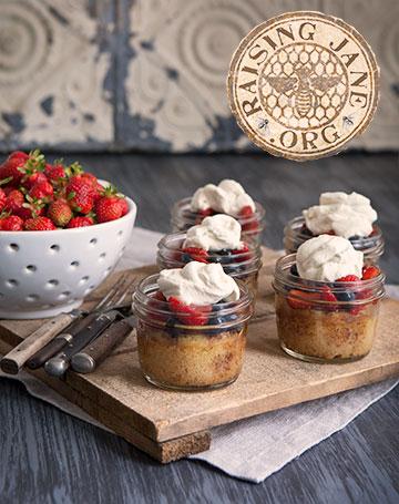 berry_cakes_4670