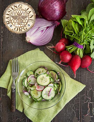 cucumber_salad-3728