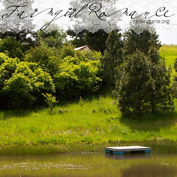 farm_romance-3943