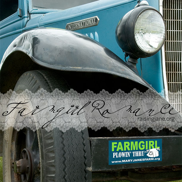 photo-of-the-day-truck