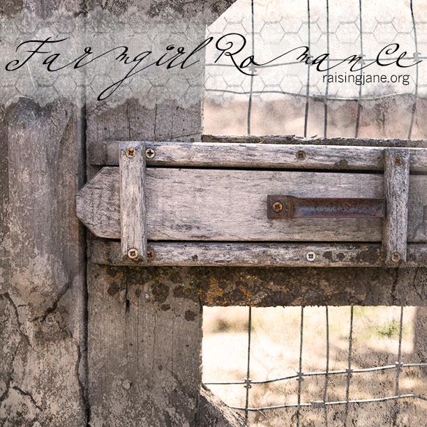 farm_romance-4006