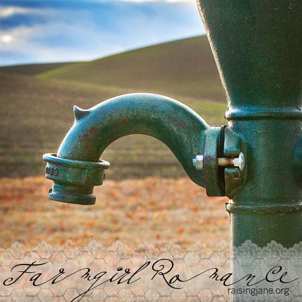 farm_romance-4439