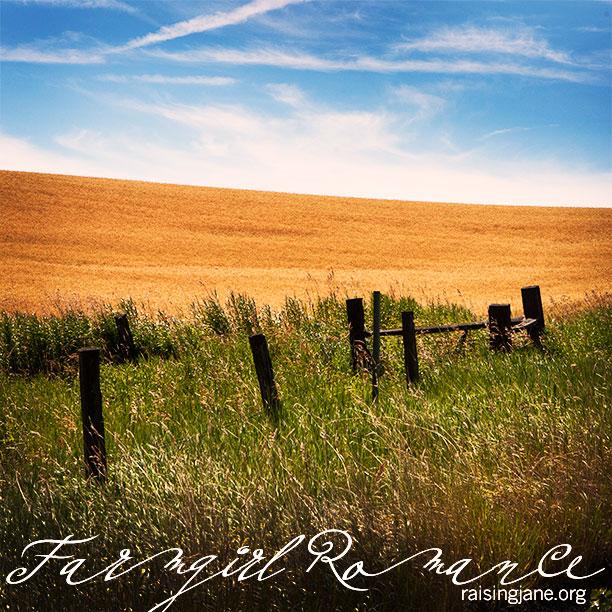 farm_romance-7531