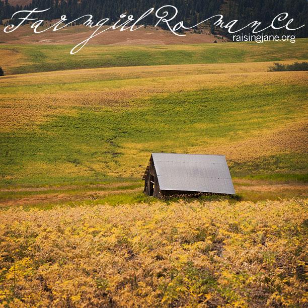 farm_romance-8523