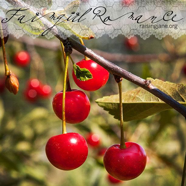 farm_romance_8549