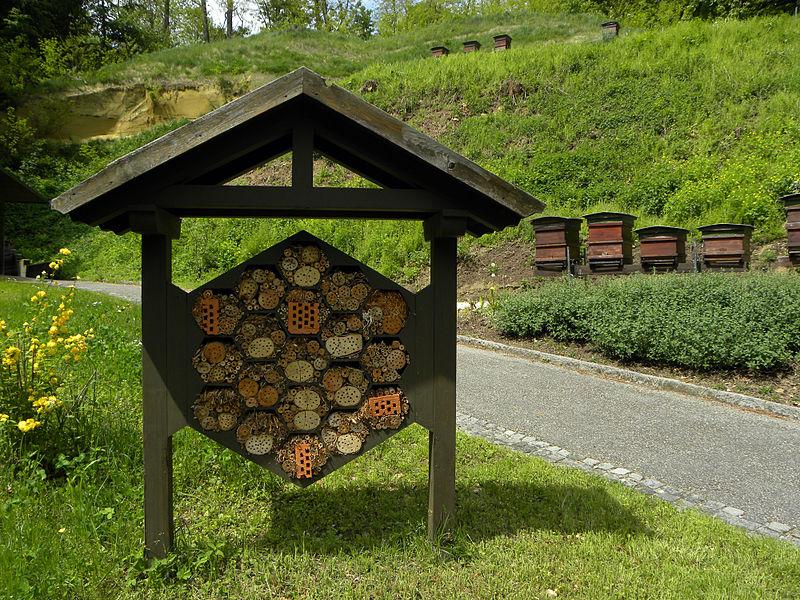 800px-Linz-Pöstlingberg_-_OÖ_Landesverband_für_Bienenzucht_-_Wildbienenhotel_und_Bienenstöcke