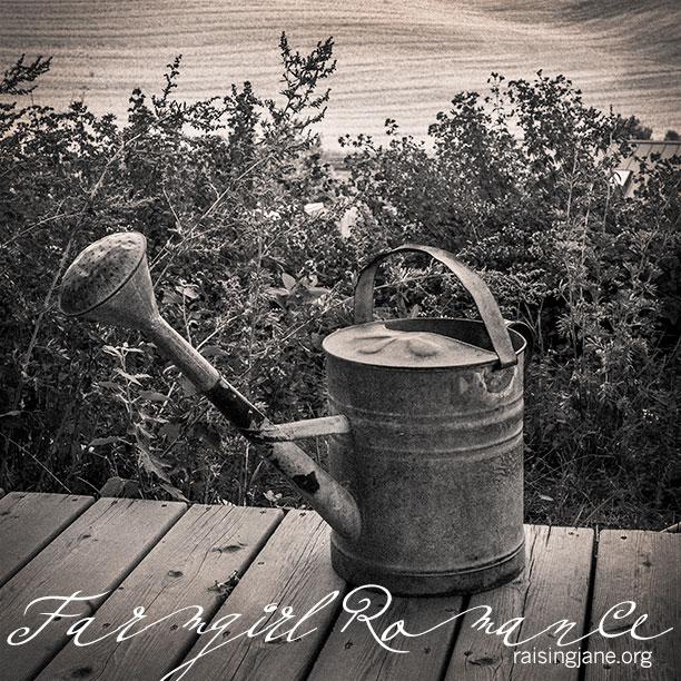 Farm_Romance-0384