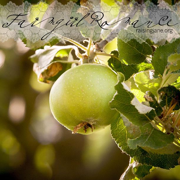 farm_romance-0029-2