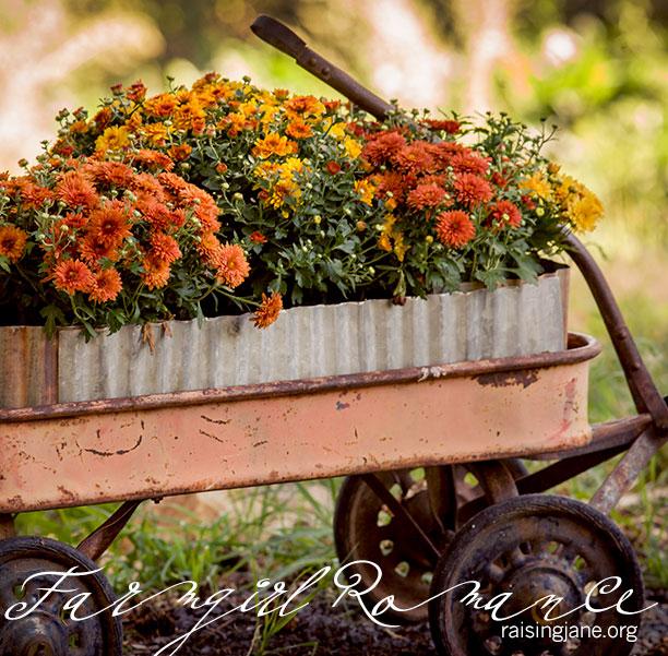 farm_romance-0210