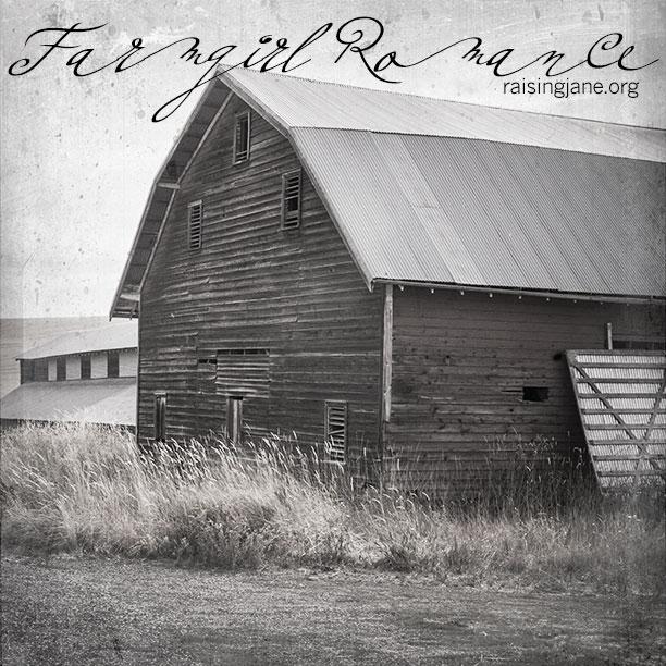 Farm_Romance-2724