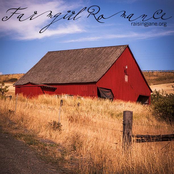 Farm_Romance-2734