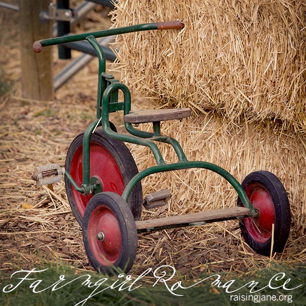 Farm_Romance-3378