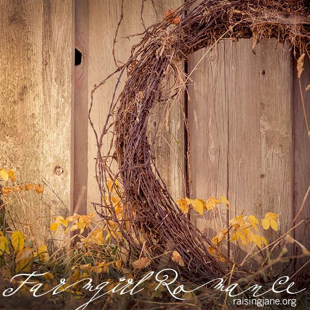 Farm_Romance-3419