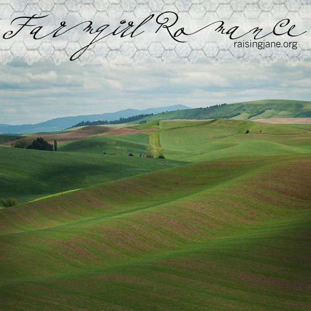 farm_romance-0491-2
