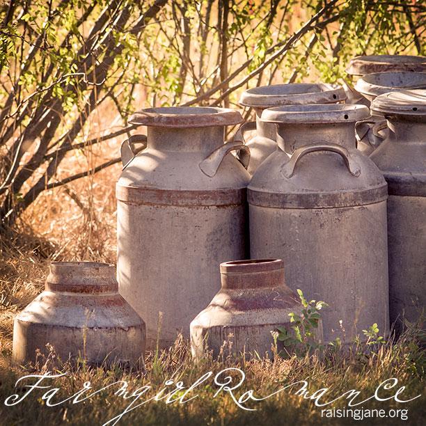 farm_romance-0957